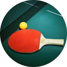成人乒乓球培训
