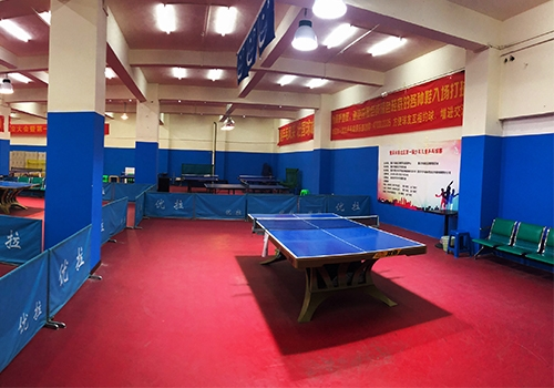 青少年乒乓球培训基地